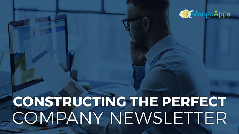 Constructing The Perfect Company Newsletter