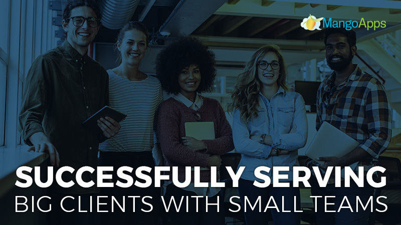 Successfully Serving Big Clients With Small Teams