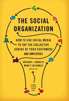 The Social Organization -Enterprise Social Business Books