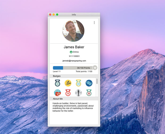 Coworkers' profile pages lists the users' current level and badges.