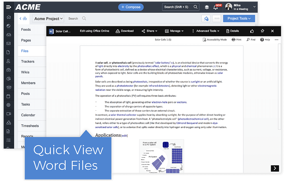 In-Browser Document View